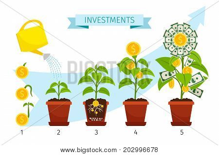 Investments process concept vector illusatration with money tree growing