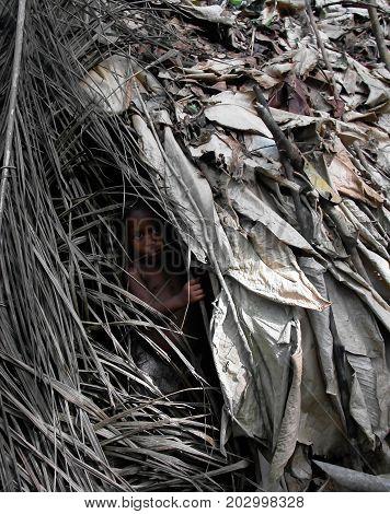 Portrait of Baka pigmy tribe child - 04-03-2014 Dja Reserve Cameroon