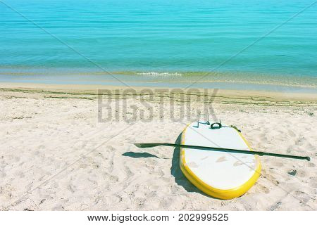 Sup board by the sea. Paddle board