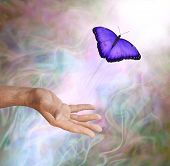 Purple Butterfly Symbolic Spiritual Release -  Male hand appearing to release a vivid purple butterfly up into the Light against a misty smokey subtle colored background poster