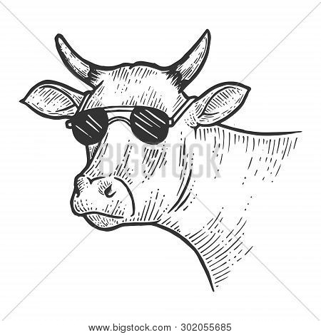 Cow Animal In Sunglasses Line Art Sketch Engraving Vector Illustration. Scratch Board Style Imitatio