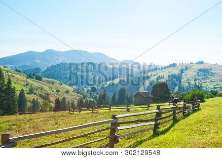 Rural landscape in Carpathian Mountains in the summer morning (near Verkhovyna), Ukraine.