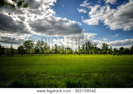 poster of Vibrant landscape with green meadows, trees, blue sky and white clouds in the background with country path