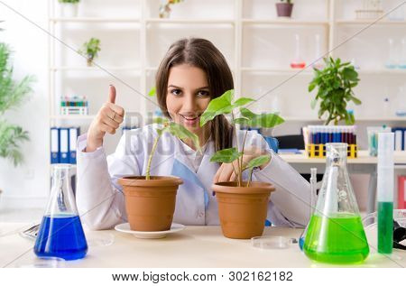 Young beautiful biotechnology chemist working in the lab
