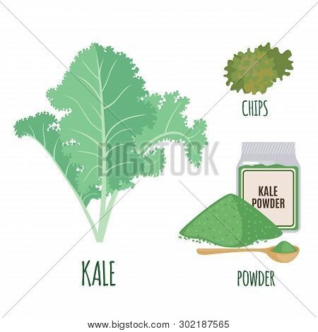 Kale Set In Flat Style Isolated On White.