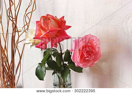 Beautiful Roses Close Up. A Bouquet Of Roses In A Vase