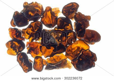 Top view of a species of edible Auriculariales fungus of jelly ear or jew's ear isolated on white background with back light poster