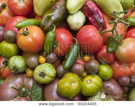 Background - Organic Vegetables