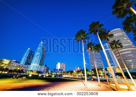 Palms and skyscrapers in Curtis Hixon waterfront park in Tampa at night. Florida, USA poster
