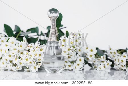 Perfume And Small White Flowers On White Background