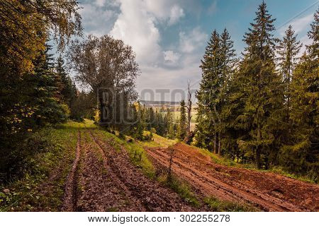 Forest Dirt Dirty Road, Off Road Terrain, Russia, Mari El