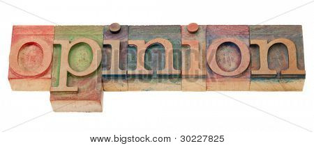 opinion  word  in vintage wood letterpress printing blocks, isolated on white
