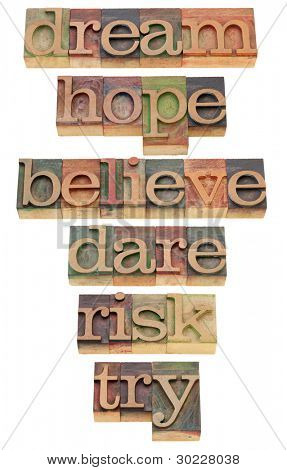 dream, hope, believe, dare, risk, try - a set of motivational and spiritual isolated words in vintage wood letterpress printing blocks