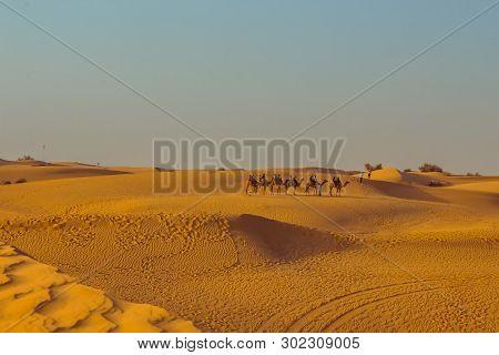 Caravan With Tourists Among The Sand Dunes Of The Desert Close Up. Dubai 2019