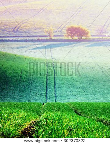 Picturesque rural landscape with green agricultural field and trees on spring hills. South Moravia region, Czech Republic