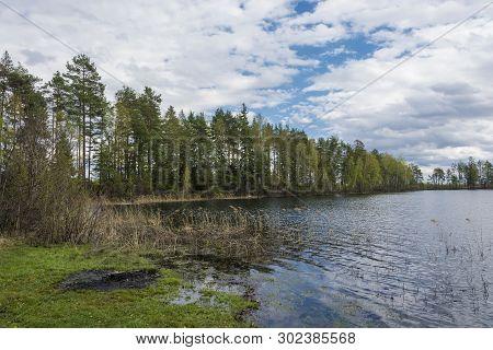 Beautiful Spring Landscape On The Ponkhar Lake, Ivanovo Region.
