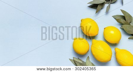 Ripe Juicy Lemons, Eucalyptus Twigs On Pastel Blue Background. Lemon Fruit, Citrus Minimal Concept,
