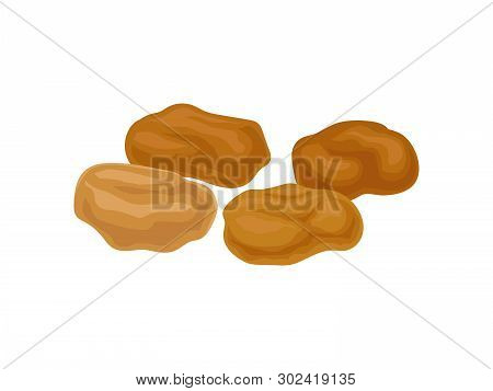 Light Brown Raisins On A White Background. Realistic Vector Illustration.