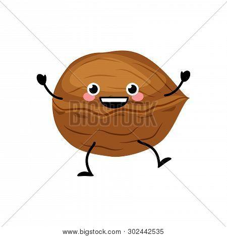 Cute Cartoon Walnut Vector Illustration Isolated On White Background.  Kawaii Walnut