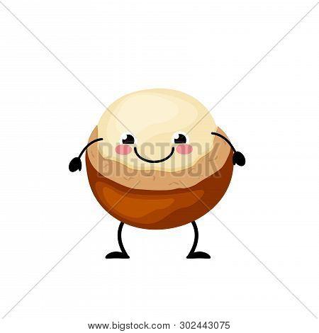Cute Cartoon Macadamia Vector Illustration Isolated On White Background.  Kawaii Macadamia