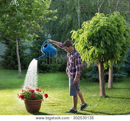 Gardener Holding Bucket And Watering Flowers In Garden