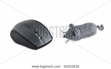 The Computer Wireless Mouse And The Toy Gray Mouse.
