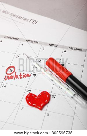 Auspicious And Fertile Day For Conceiving Child. Family Planning. Ovulation Cycle.