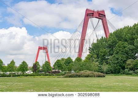 Willemsbrug Bridge Red Cable Bridge Against Blue Sky View From A Park, Rotterdam, Netherlands