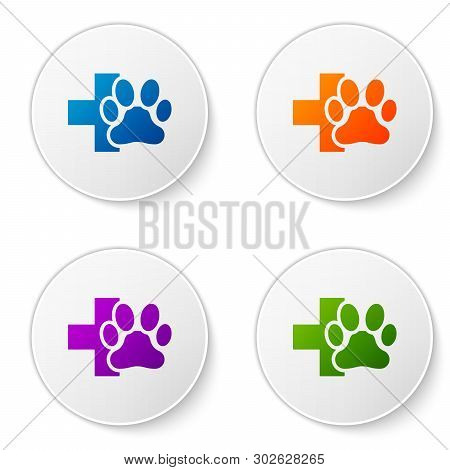 Color Veterinary Clinic Symbol Icon Isolated On White Background. Cross Hospital Sign. A Stylized Pa