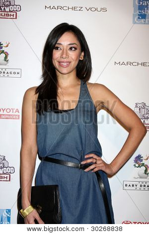 LOS ANGELES - FEB 19:  Aimee Garcia arrives at the 2nd Annual Hollywood Rush at the Wilshire Ebell on February 19, 2012 in Los Angeles, CA.