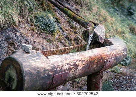 Natural Raw Unfiltered Water Flowing From Wooden Fountain Spring At The Val Vertova Torrent Near Ber
