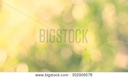 Nature Yellow Bokeh Sun Light Flare And Blur Leaf Abstract Texture Background, Blurred Natural Green