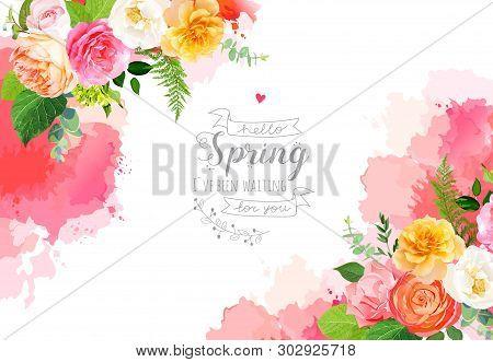 Floral Vector Design Horizontal Frame.pink, Yellow, Fuchsia Rose, Orange Ranunculus, Juliet Garden R