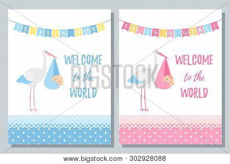 Baby Shower Card. Vector. Baby Boy, Girl Design. Cute Pink, Blue Banner With Newborn Kid, Stork, Fla