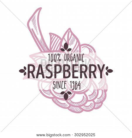 Raspberry Isolated Icon With Lettering Berry Silhouette Organic Food