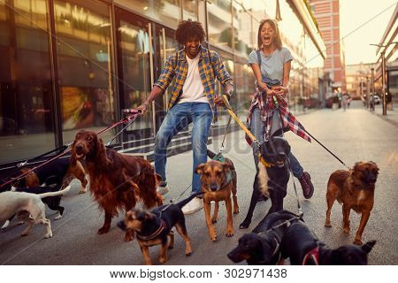 Smiling girl and man dog walker with group of dogs enjoying in walk.