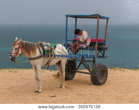 Coachman Of A Horse-drawn Carriage Checking His Cell Phone Near Jericoacoara On Brazil