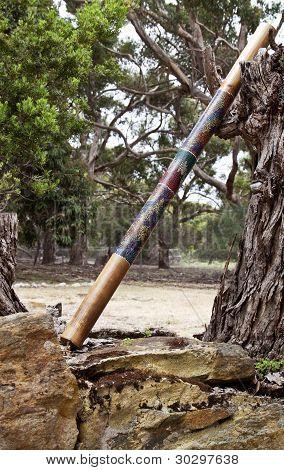 Single Didgeridoo