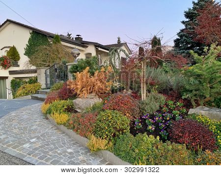 Varieties of plants in a garden in front of a house