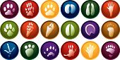 Eighteen various animal track buttons in many different colors poster