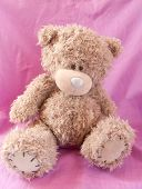 Sad bear toy on a pink background poster