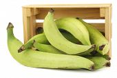 unripe baking bananas (plantain bananas) in a wooden crate on a white background poster