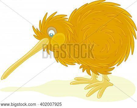Amusing Flightless New Zealand Kiwi Bird With Shaggy Feathers And A Long Bill, Vector Cartoon Illust