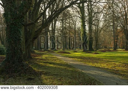 Iłowa, A Small Town In Western Poland. There Is A Historic Manor Park In The City. The Czerna Mała R