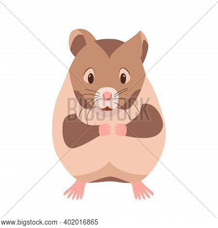 Cute Funny Hamster. Domestic Pet Guinea Pig. Rodent Cartoon Character. Vector Illustration Isolated