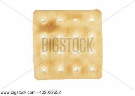 Macro Shot Biscuit Texture  Background. Closeup Cookies Isolated On White Background. Single Biscuit