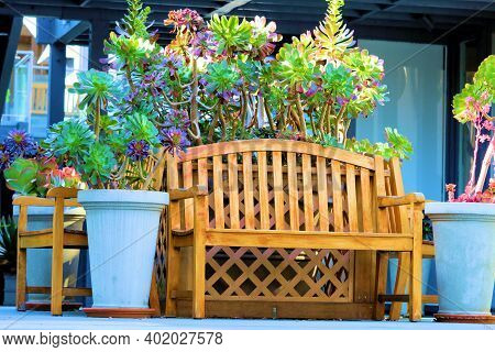 Wooden Chair Besides Potted Plants Taken At A Garden In A Courtyard