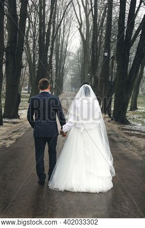 The Bride And Groom Are Walking Along The Alley. A Married Couple. Wedding. Important Day
