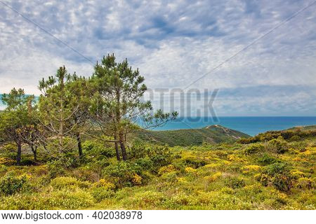 Landscape with mountains, valley and ocean in the background, West Atlantic coast of Algarve region, south of Portugal.