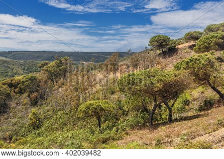 Beautiful landscape with a green valley surrounded by low mountains. West Atlantic coast of Algarve region, south of Portugal.